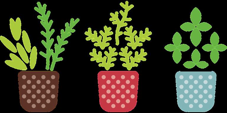 דמוי צמחים